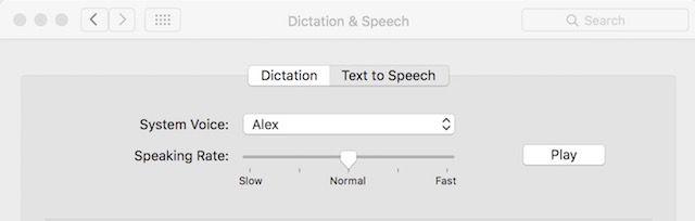 Dictation- & amp; -Speech