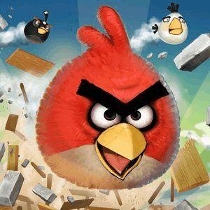 8 Vídeos aves raiva impressionantes para o viciado