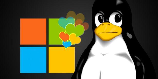 A microsoft realmente amo linux depois de tudo?
