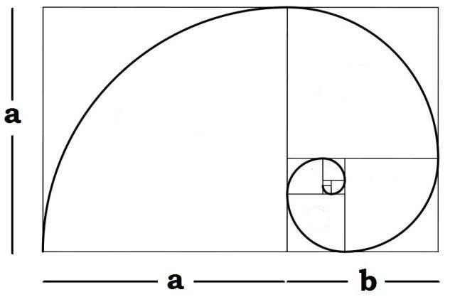 fotografia-regras-composição-golden-espiral