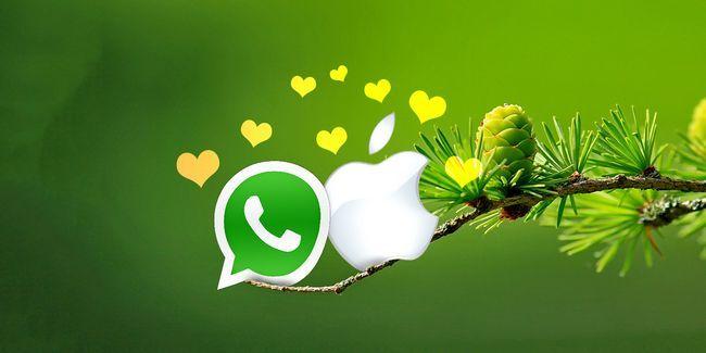 Como instalar o whatsapp para mac os x: o que você precisa saber