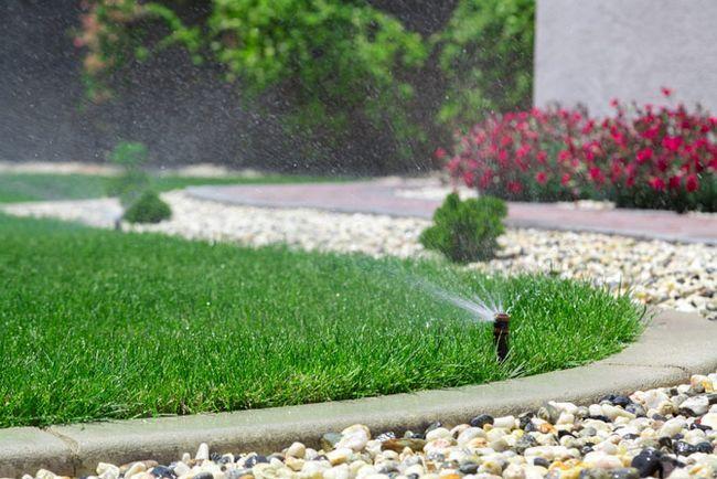 aspersão de água gramado