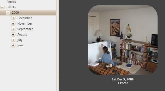 software de gerenciamento de fotos gratuito