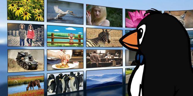O estado atual dos serviços de streaming de vídeo no linux