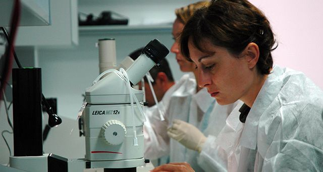 microscópio de experimento